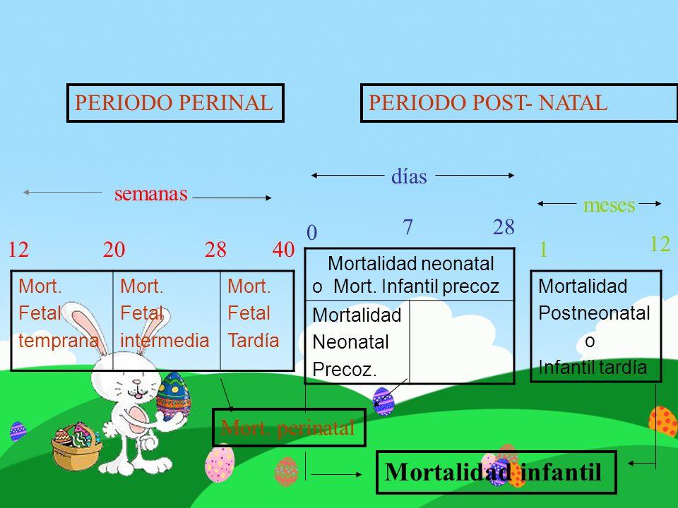Mort. Fetal temprana Mort. Fetal intermedia Mort. Fetal Tardía Mortalidad Postneonatal o Infantil tardía Mortalidad neonatal o Mort. Infantil precoz M