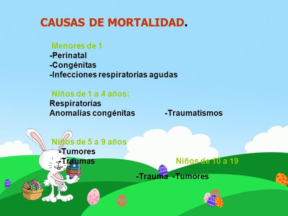 Menores de 1 -Perinatal -Congénitas -Infecciones respiratorias agudas Niños de 1 a 4 años: Respiratorias Anomalías congénitas -Traumatismos Niños de 5
