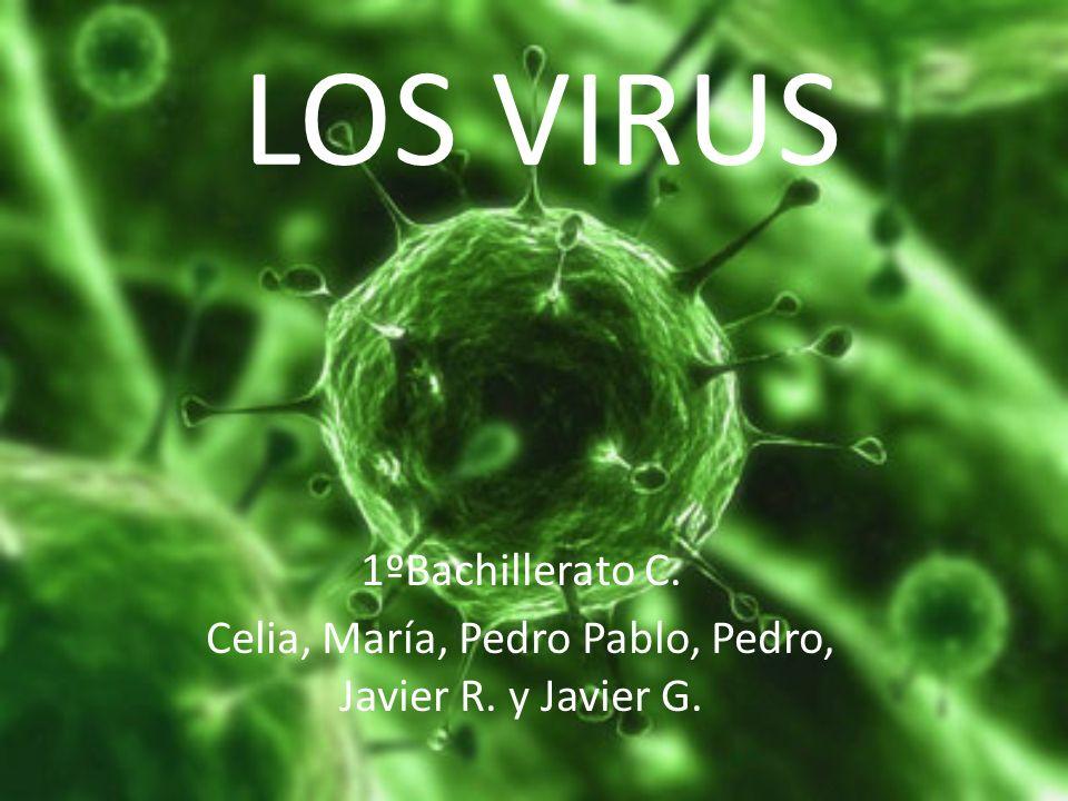 LOS VIRUS 1ºBachillerato C. Celia, María, Pedro Pablo, Pedro, Javier R. y Javier G.