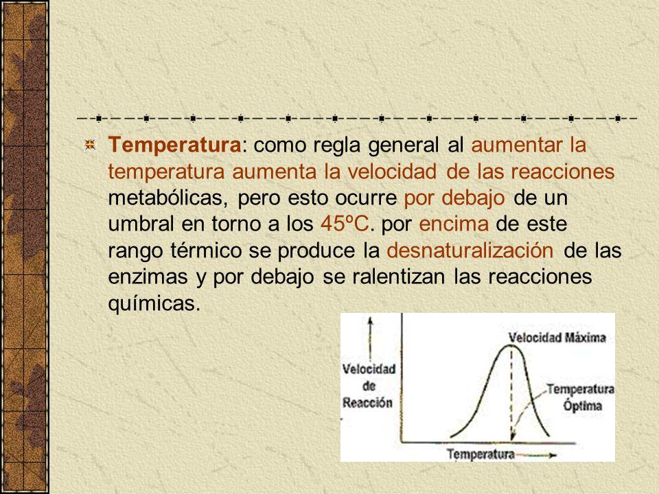 Temperatura: como regla general al aumentar la temperatura aumenta la velocidad de las reacciones metabólicas, pero esto ocurre por debajo de un umbra