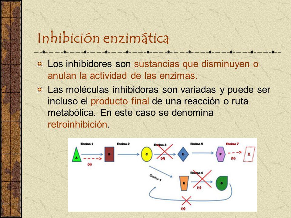 Inhibición enzimática Los inhibidores son sustancias que disminuyen o anulan la actividad de las enzimas. Las moléculas inhibidoras son variadas y pue