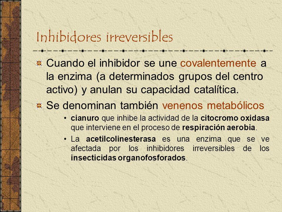 Inhibidores irreversibles Cuando el inhibidor se une covalentemente a la enzima (a determinados grupos del centro activo) y anulan su capacidad catalí