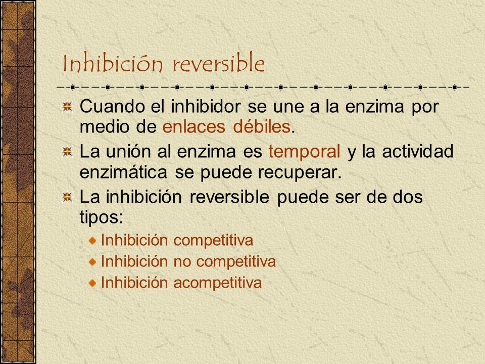 Inhibición reversible Cuando el inhibidor se une a la enzima por medio de enlaces débiles. La unión al enzima es temporal y la actividad enzimática se