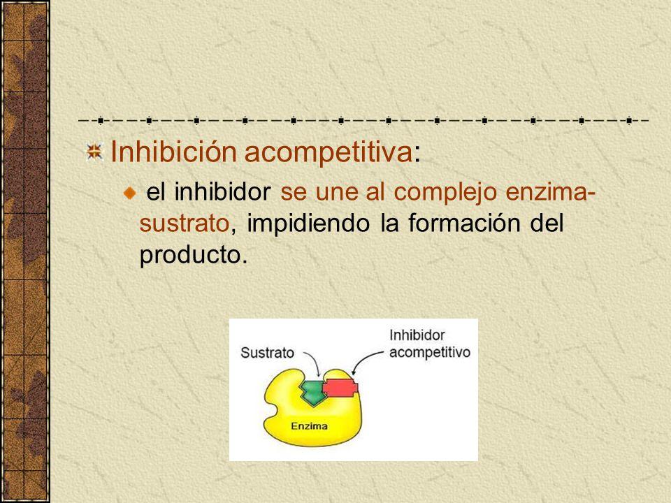 Inhibición acompetitiva: el inhibidor se une al complejo enzima- sustrato, impidiendo la formación del producto.