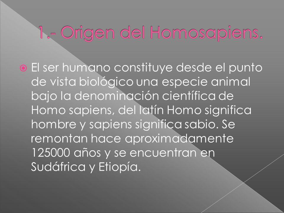 El ser humano constituye desde el punto de vista biológico una especie animal bajo la denominación científica de Homo sapiens, del latín Homo signific