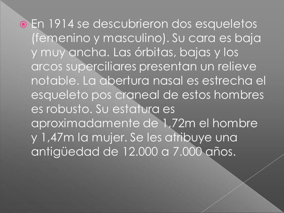 En 1914 se descubrieron dos esqueletos (femenino y masculino). Su cara es baja y muy ancha. Las órbitas, bajas y los arcos superciliares presentan un