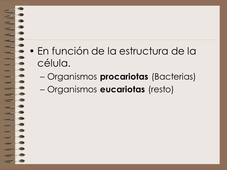 En función de la estructura de la célula. –Organismos procariotas (Bacterias) –Organismos eucariotas (resto)