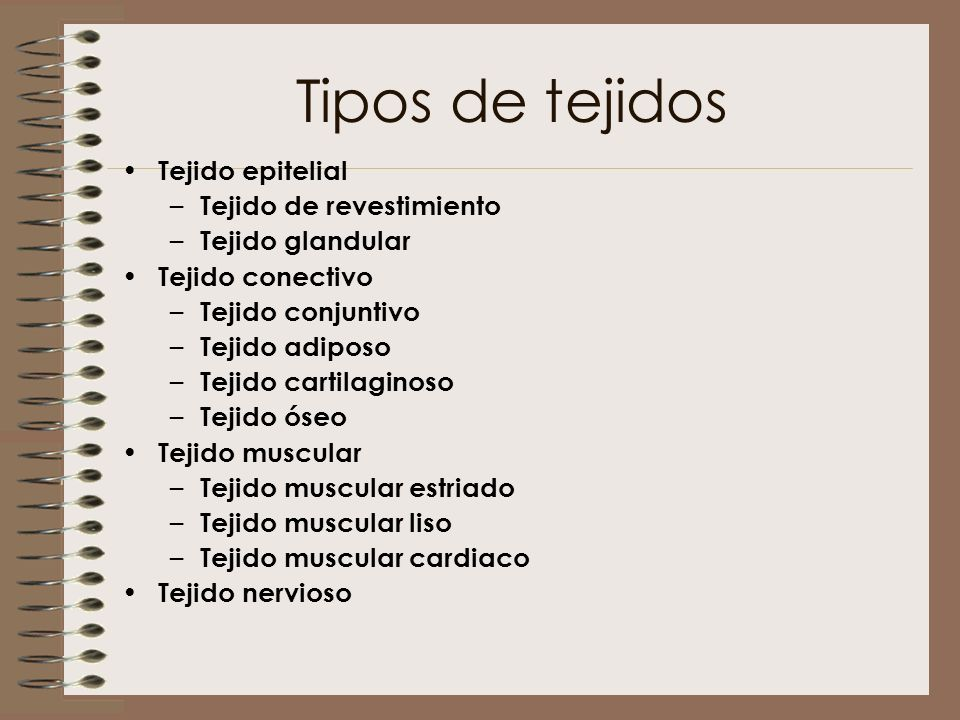 Tipos de tejidos Tejido epitelial – Tejido de revestimiento – Tejido glandular Tejido conectivo – Tejido conjuntivo – Tejido adiposo – Tejido cartilag