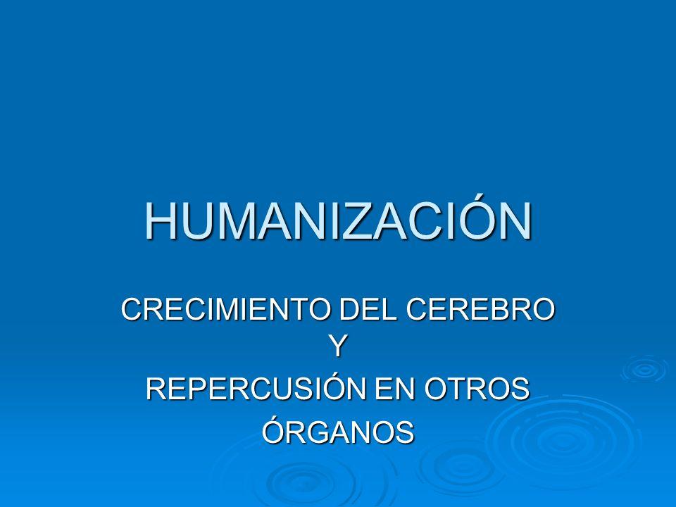 HUMANIZACIÓN CRECIMIENTO DEL CEREBRO Y REPERCUSIÓN EN OTROS ÓRGANOS