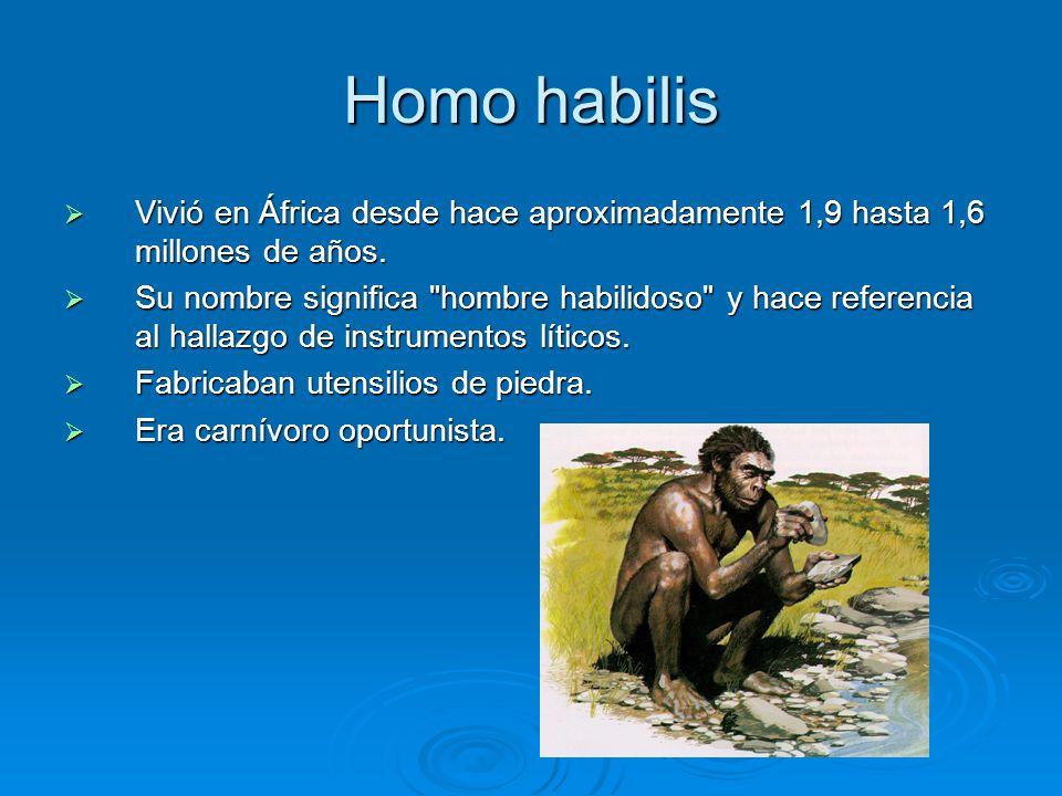 Homo habilis Vivió en África desde hace aproximadamente 1,9 hasta 1,6 millones de años. Vivió en África desde hace aproximadamente 1,9 hasta 1,6 millo
