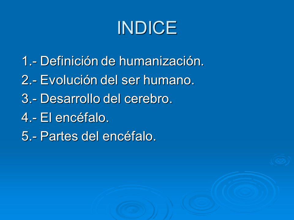 INDICE 1.- Definición de humanización. 1.- Definición de humanización. 2.- Evolución del ser humano. 2.- Evolución del ser humano. 3.- Desarrollo del
