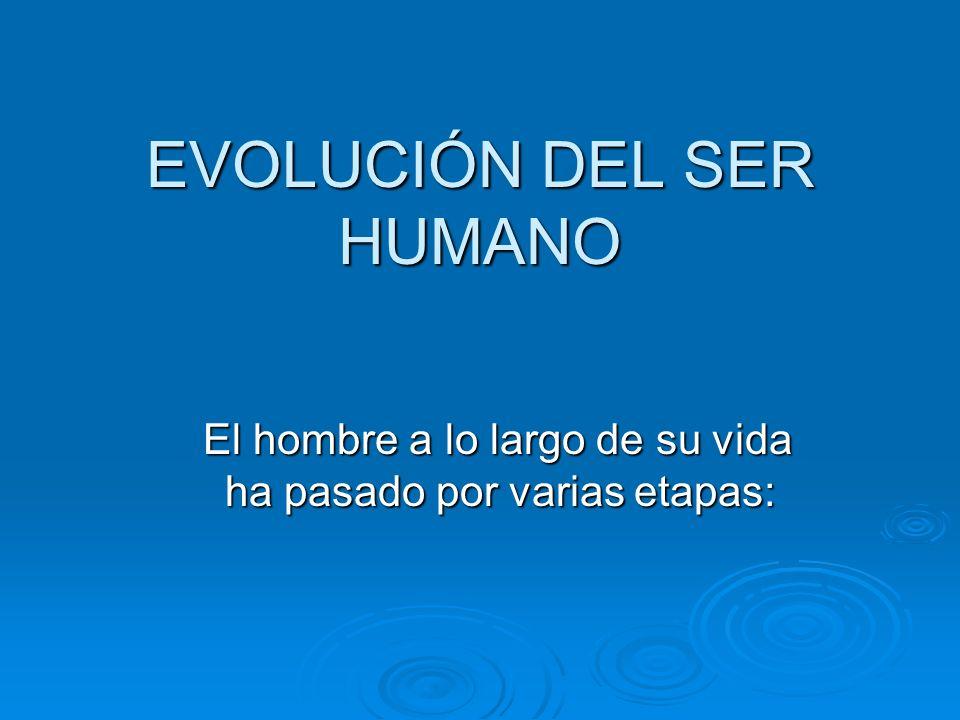 EVOLUCIÓN DEL SER HUMANO El hombre a lo largo de su vida ha pasado por varias etapas: El hombre a lo largo de su vida ha pasado por varias etapas: