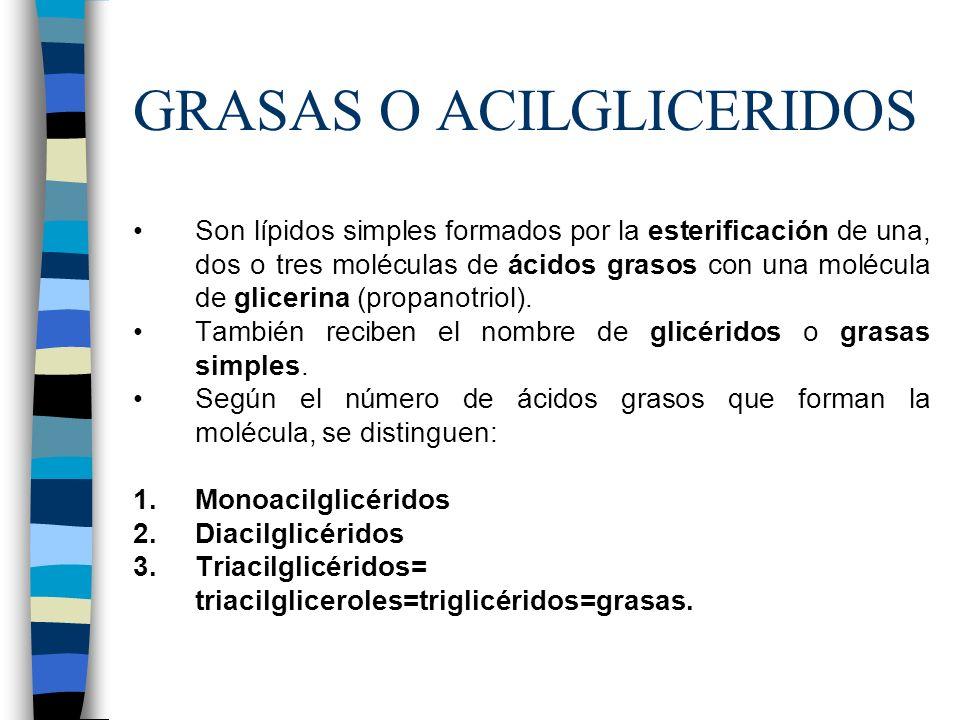 GRASAS O ACILGLICERIDOS Son lípidos simples formados por la esterificación de una, dos o tres moléculas de ácidos grasos con una molécula de glicerina
