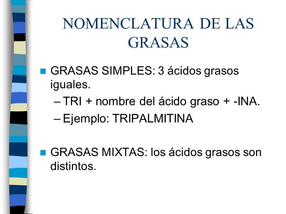 NOMENCLATURA DE LAS GRASAS GRASAS SIMPLES: 3 ácidos grasos iguales. –TRI + nombre del ácido graso + -INA. –Ejemplo: TRIPALMITINA GRASAS MIXTAS: los ác