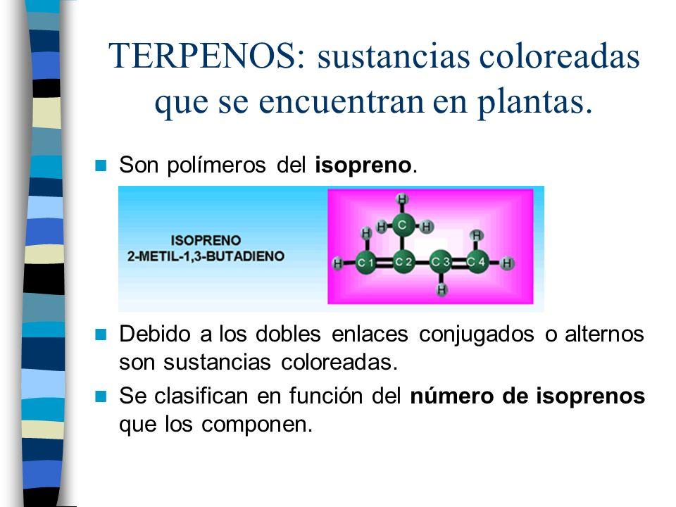 TERPENOS: sustancias coloreadas que se encuentran en plantas. Son polímeros del isopreno. Debido a los dobles enlaces conjugados o alternos son sustan