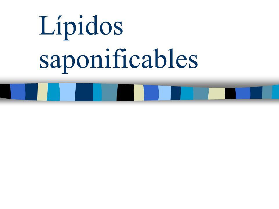 LÍPIDOS SAPONIFICABLES Son ésteres, por lo que su hidrólisis produce un alcohol y un ácido carboxílico.