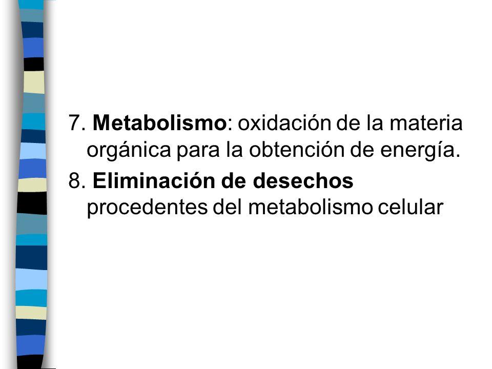 7. Metabolismo: oxidación de la materia orgánica para la obtención de energía. 8. Eliminación de desechos procedentes del metabolismo celular