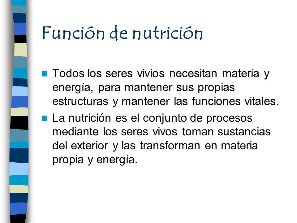 Función de nutrición Todos los seres vivios necesitan materia y energía, para mantener sus propias estructuras y mantener las funciones vitales. La nu