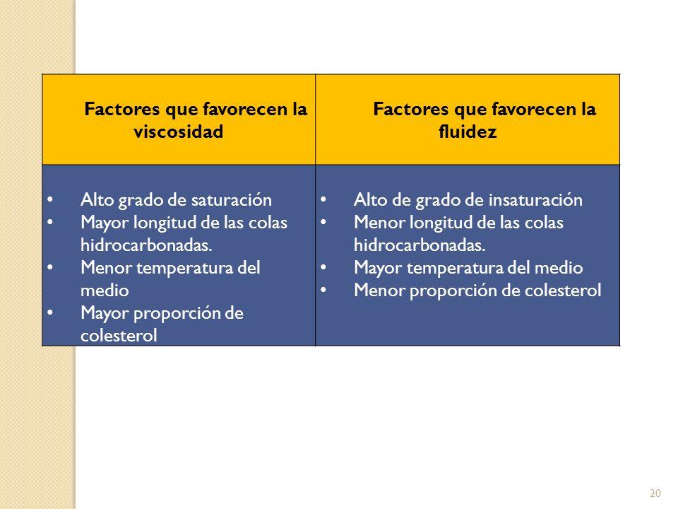 20 Factores que favorecen la viscosidad Factores que favorecen la fluidez Alto grado de saturación Mayor longitud de las colas hidrocarbonadas. Menor