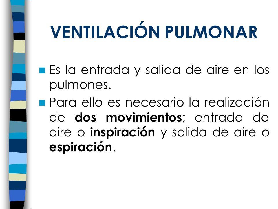 VENTILACIÓN PULMONAR Es la entrada y salida de aire en los pulmones. Para ello es necesario la realización de dos movimientos ; entrada de aire o insp