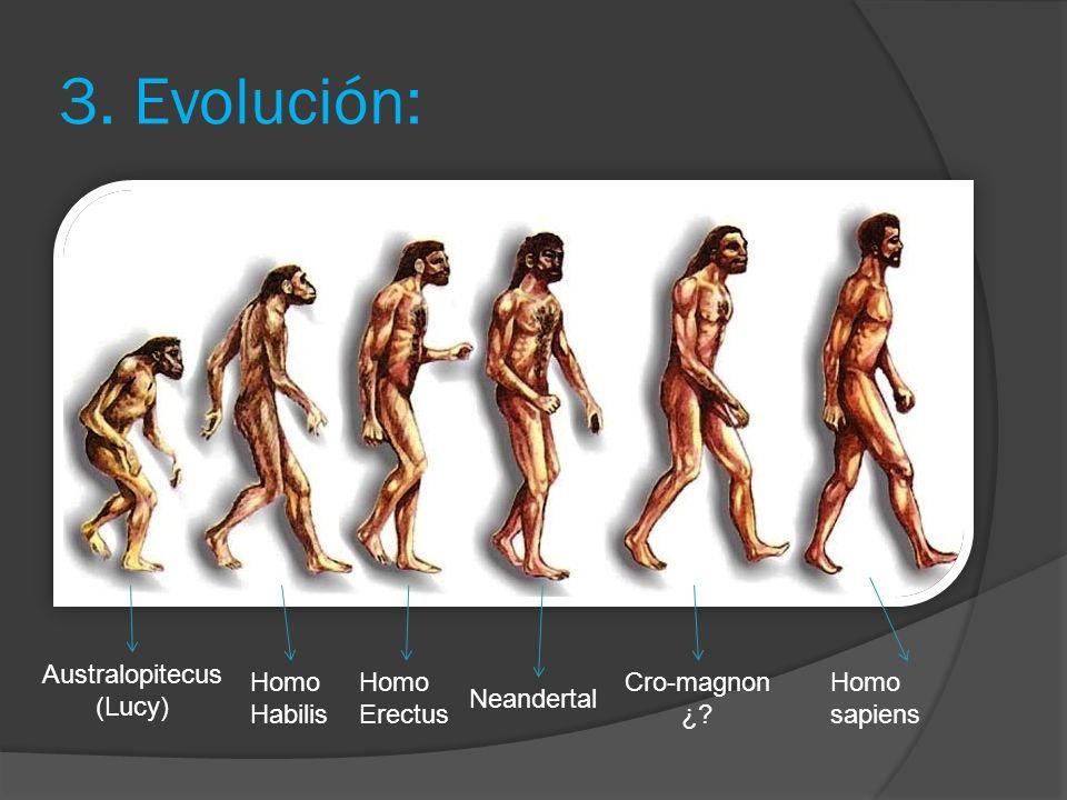 3.Evolución: Homo sapiens Neandertal Cro-magnon ¿.