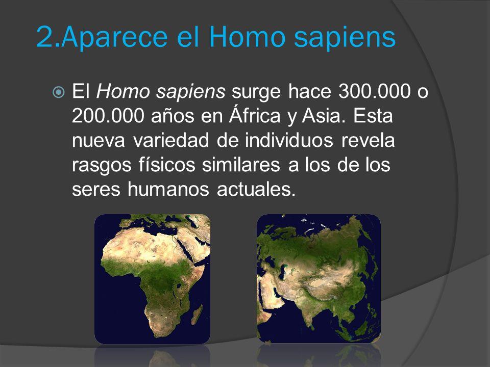 2.Aparece el Homo sapiens El Homo sapiens surge hace 300.000 o 200.000 años en África y Asia.