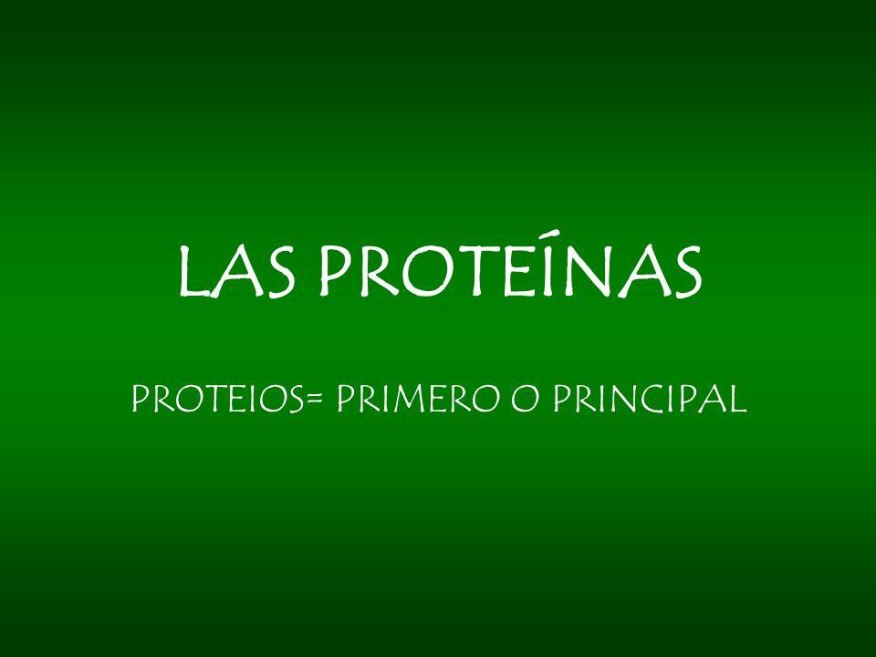 LAS PROTEÍNAS PROTEIOS= PRIMERO O PRINCIPAL