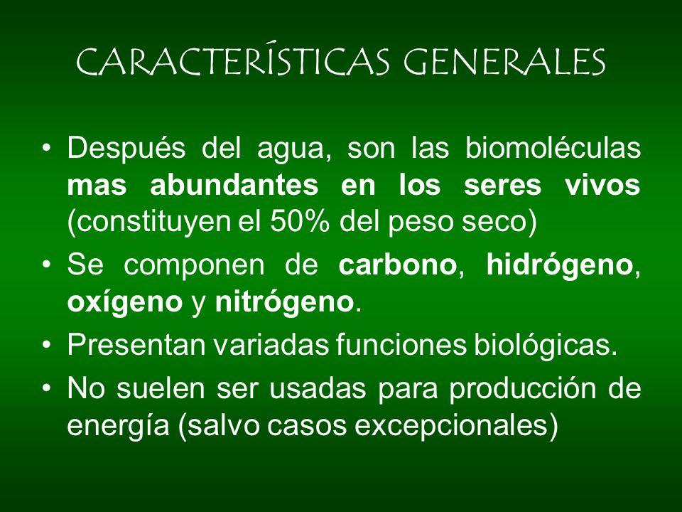 Después del agua, son las biomoléculas mas abundantes en los seres vivos (constituyen el 50% del peso seco) Se componen de carbono, hidrógeno, oxígeno