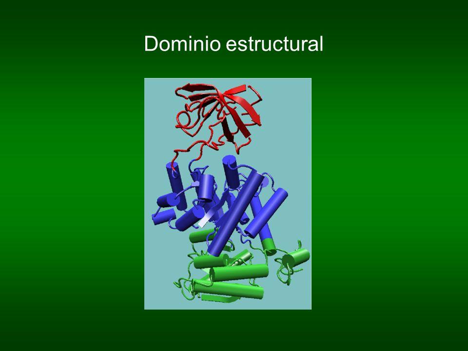 Dominio estructural