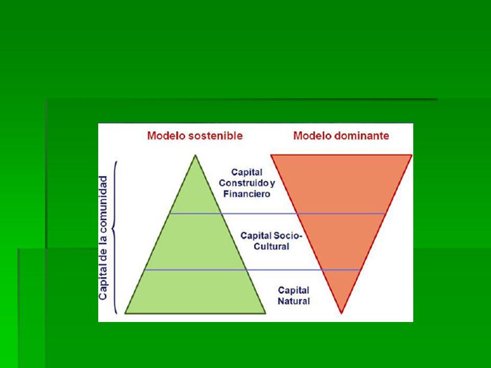 Se concreta en tres niveles: Se concreta en tres niveles: Sostenibilidad económica: que implica garantizar el desarrollo económico a las generaciones