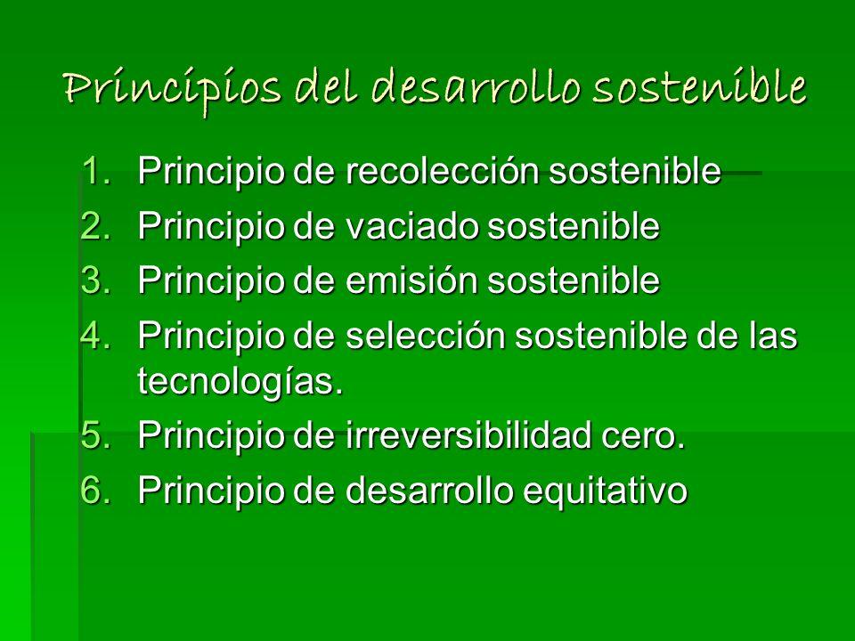 En la cumbre de Río de Janeiro en 1992, se constituyo la Carta de la Tierra, En la cumbre de Río de Janeiro en 1992, se constituyo la Carta de la Tier