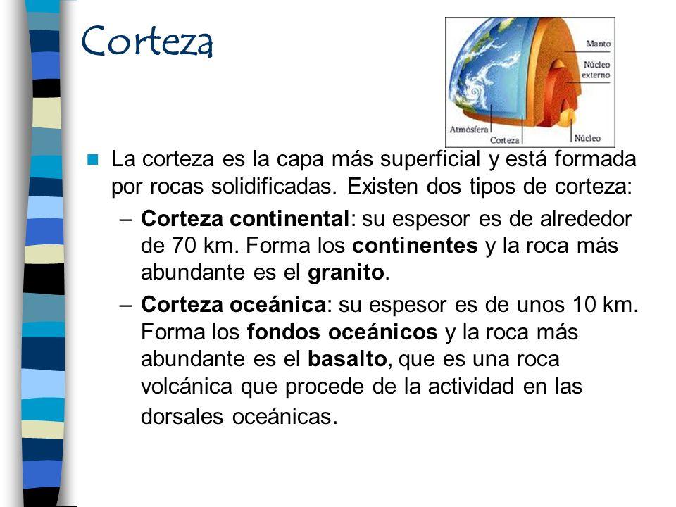 Corteza La corteza es la capa más superficial y está formada por rocas solidificadas. Existen dos tipos de corteza: –Corteza continental: su espesor e