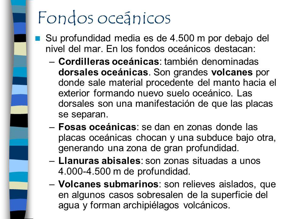 Fondos oceánicos Su profundidad media es de 4.500 m por debajo del nivel del mar. En los fondos oceánicos destacan: –Cordilleras oceánicas: también de
