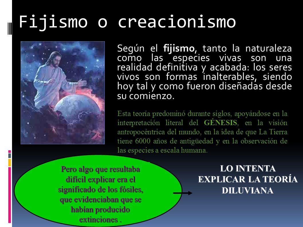 Fijismo o creacionismo Según el fijismo, tanto la naturaleza como las especies vivas son una realidad definitiva y acabada: los seres vivos son formas