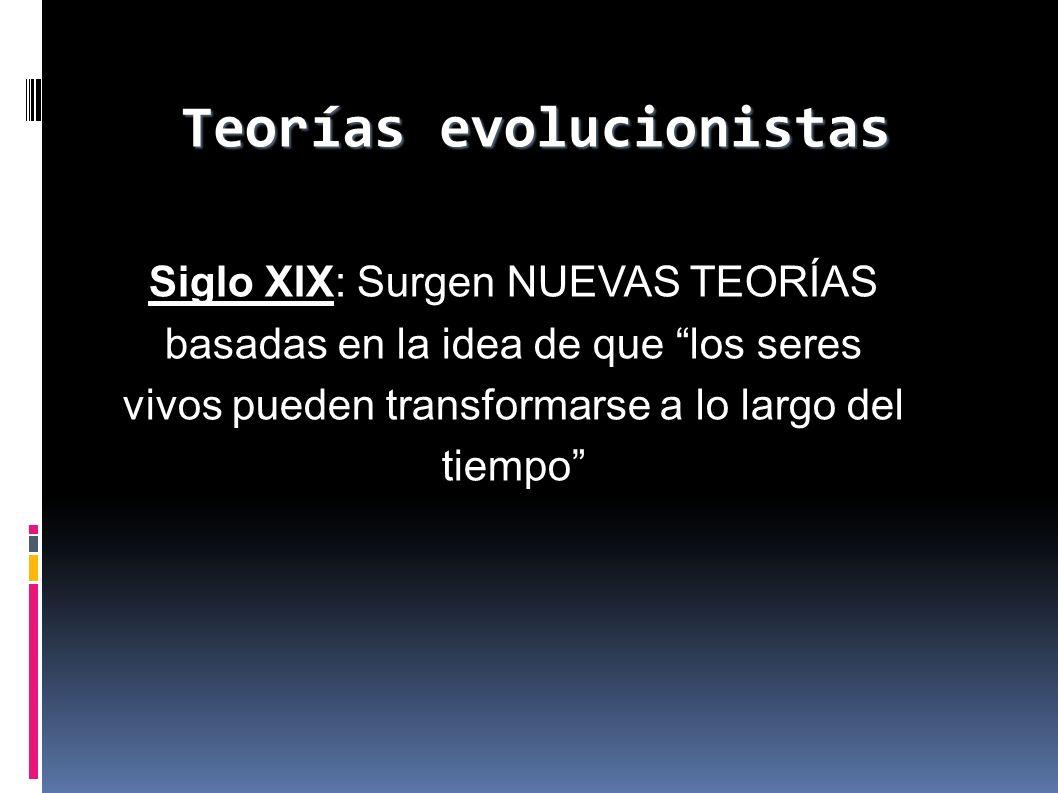 Teorías evolucionistas Siglo XIX: Surgen NUEVAS TEORÍAS basadas en la idea de que los seres vivos pueden transformarse a lo largo del tiempo