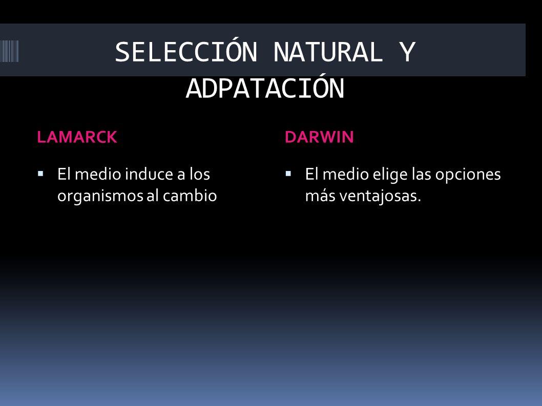 En1859,Darwin dio a conocer su teoría en el libro titulado El origen de las especies, basado en cuatro argumentos: 1.El mundo está en continua evolución.