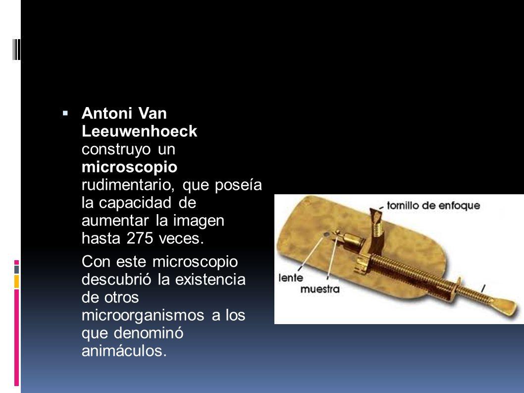 Antoni Van Leeuwenhoeck construyo un microscopio rudimentario, que poseía la capacidad de aumentar la imagen hasta 275 veces. Con este microscopio des