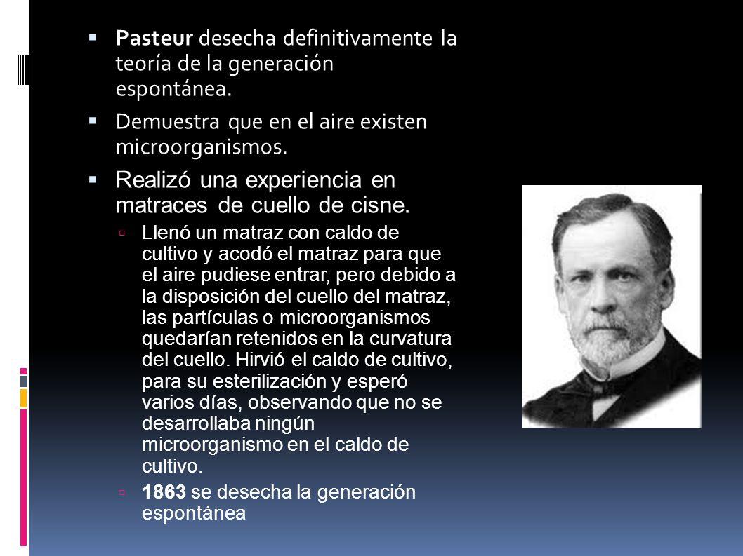 Pasteur desecha definitivamente la teoría de la generación espontánea. Demuestra que en el aire existen microorganismos. Realizó una experiencia en ma