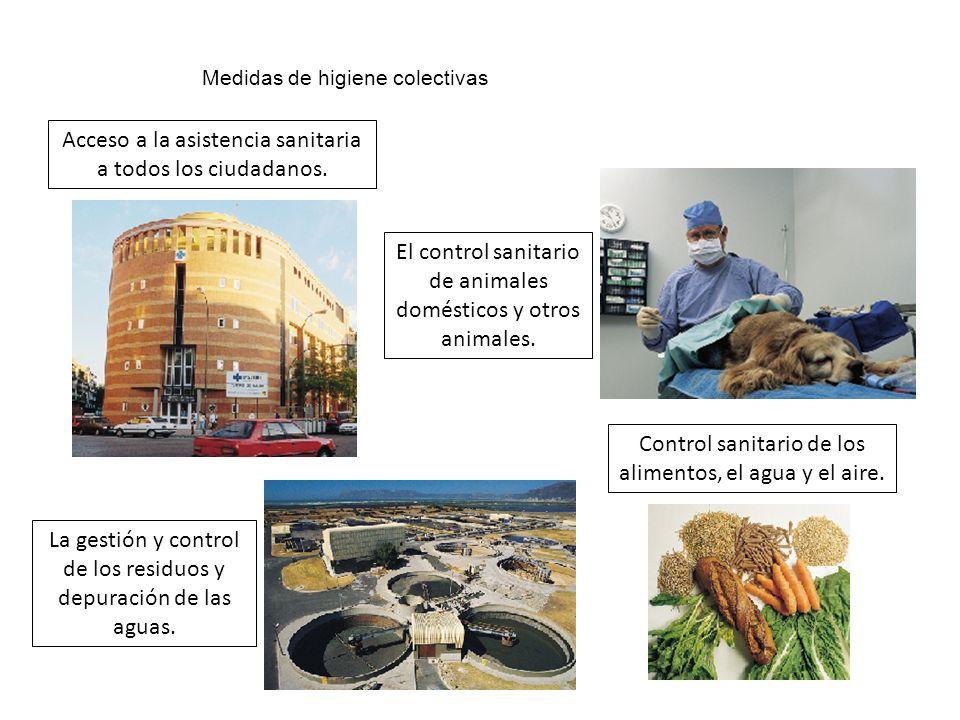 Medidas de higiene colectivas Acceso a la asistencia sanitaria a todos los ciudadanos. La gestión y control de los residuos y depuración de las aguas.