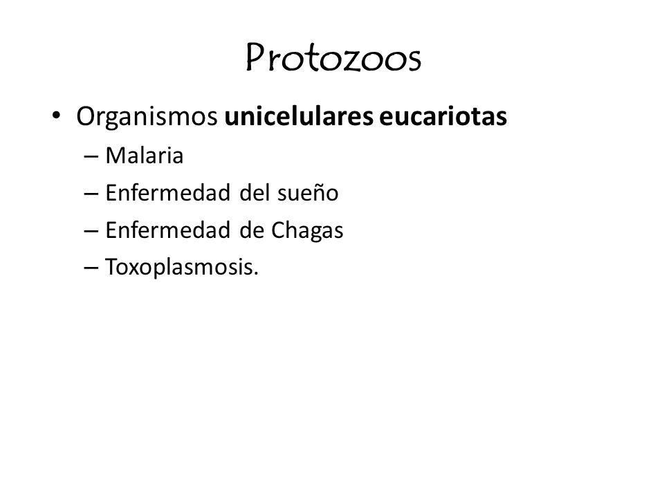 Protozoos Organismos unicelulares eucariotas – Malaria – Enfermedad del sueño – Enfermedad de Chagas – Toxoplasmosis.