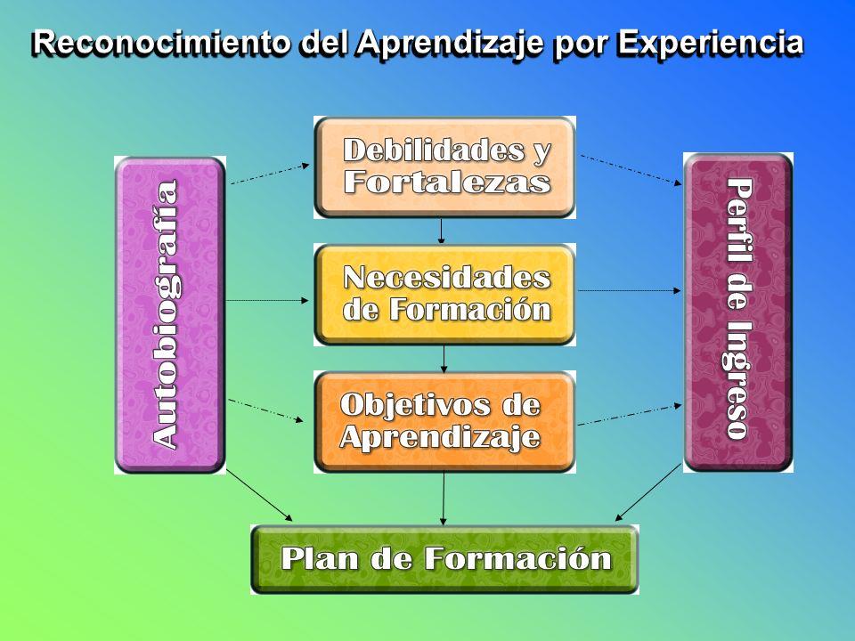 Reconocimiento del Aprendizaje por Experiencia