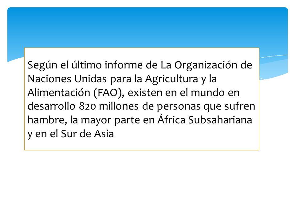 Según el último informe de La Organización de Naciones Unidas para la Agricultura y la Alimentación (FAO), existen en el mundo en desarrollo 820 millo