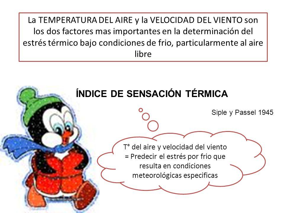 FACTORES SITUACIONALES Hipotermia de los recreacionistas Peligrosa situación de estrés por frio, por inadecuada protección.