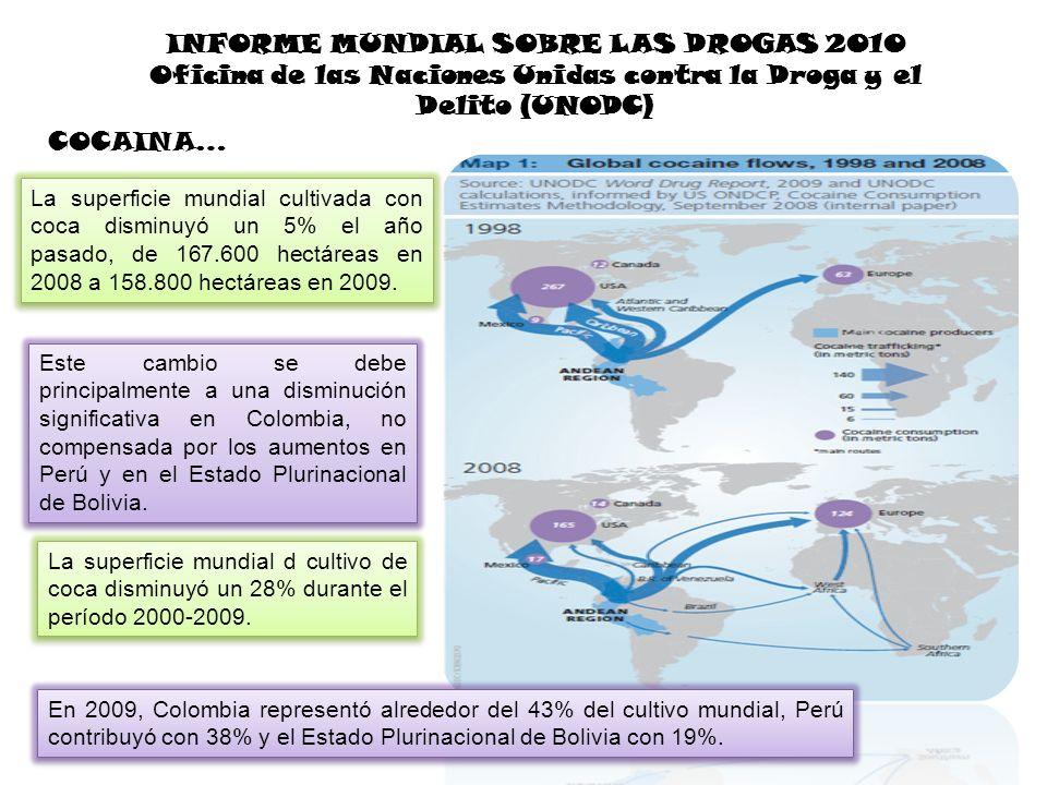 INFORME MUNDIAL SOBRE LAS DROGAS 2010 Oficina de las Naciones Unidas contra la Droga y el Delito (UNODC) La superficie mundial cultivada con coca dism