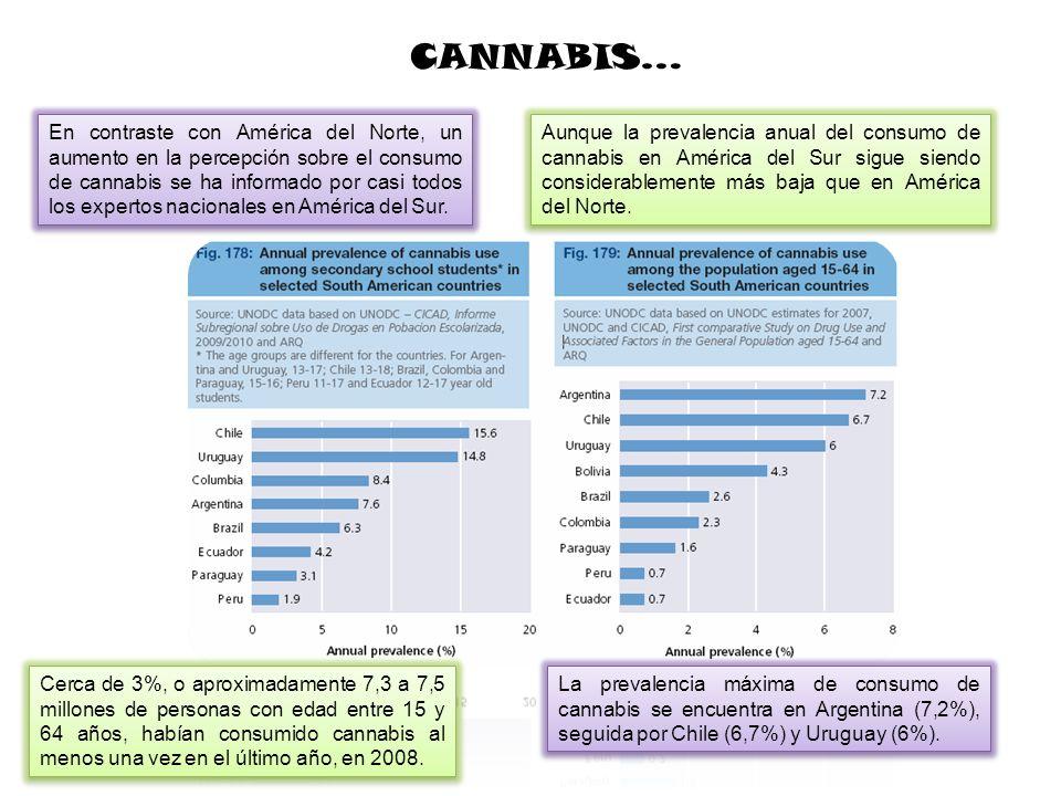 En contraste con América del Norte, un aumento en la percepción sobre el consumo de cannabis se ha informado por casi todos los expertos nacionales en