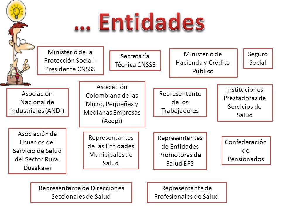 Ministerio de la Protección Social - Presidente CNSSS Secretaría Técnica CNSSS Ministerio de Hacienda y Crédito Público Seguro Social Asociación Nacio
