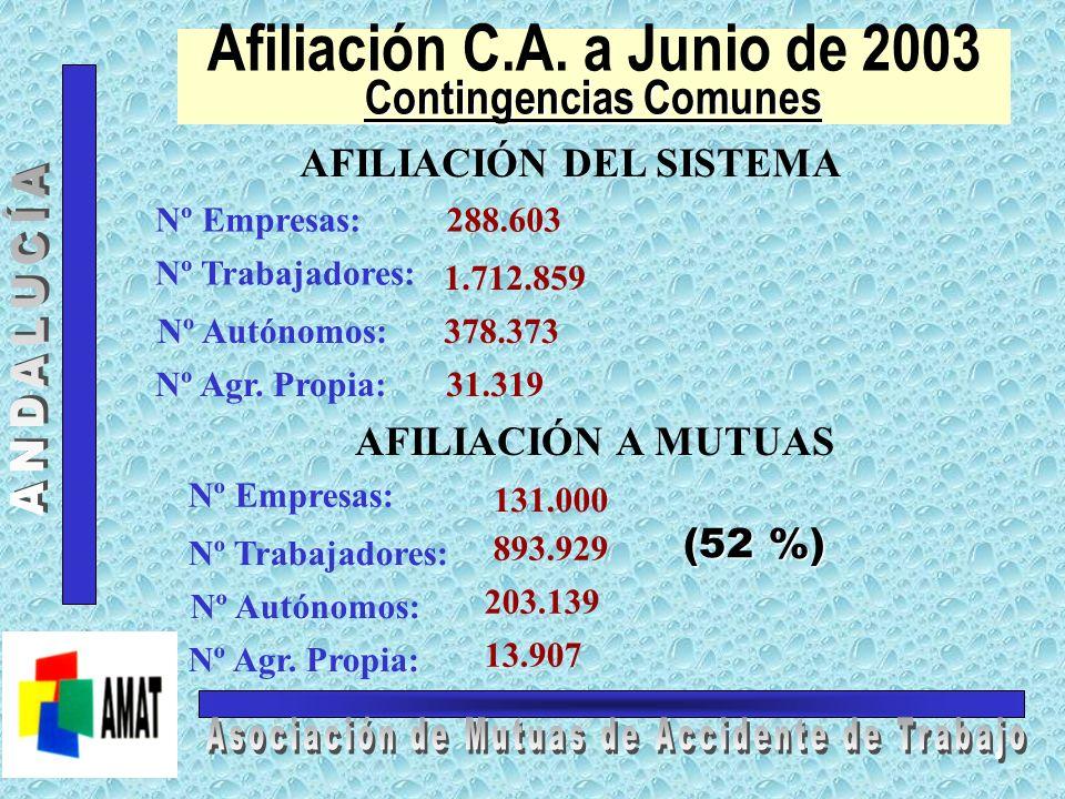 Contingencias Profesionales Afiliación C.A. a Junio de 2003 Contingencias Profesionales AFILIACIÓN DEL SISTEMA AFILIACIÓN A MUTUAS Nº Empresas:: Nº Tr