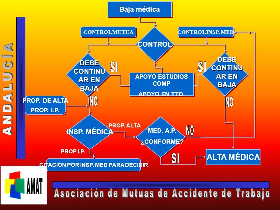 ESQUEMA GENERAL DE ACTUACIÓN EN LA IT CC BAJA MÉDICA APOYO EN ESTUDIOS COMPLEMENTARIOS APOYO EN TRATAMIENTO PROPUESTA MOTIVADA DE ALTA PROP. DE ALTA P