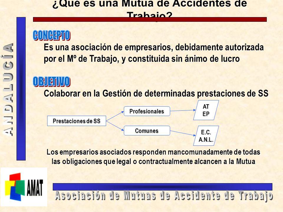 COMPETENCIAS DE LAS MUTUAS EN LA I.T.C.C.