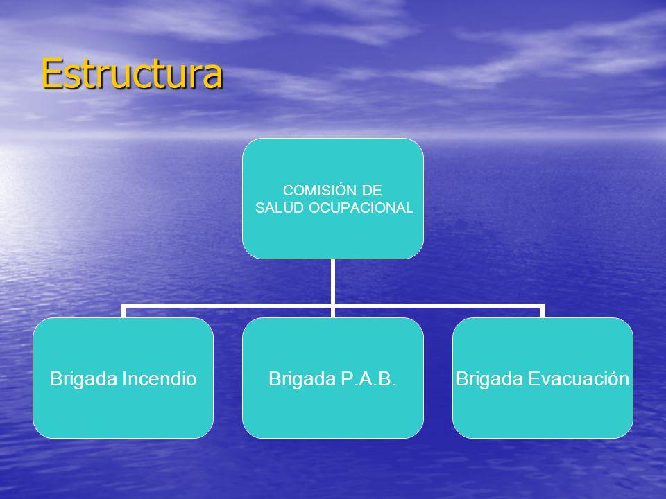 Estructura COMISIÓN DE SALUD OCUPACIONAL Brigada Incendio Brigada P.A.B. Brigada Evacuación